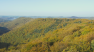 Pfalz-Dreh